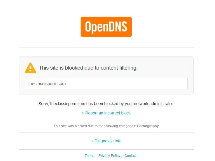 OpenDNS porn block error message